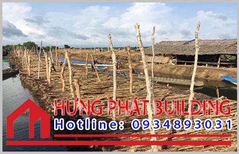 Hưng Phát nơi bán cừ tràm giá rẻ ởCà Mau.