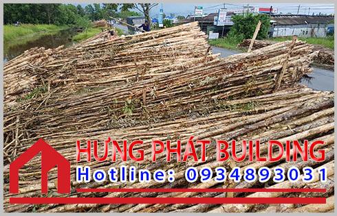 Cừ tràm Quận Bình Tân 1 cây bán giá như thế nào.