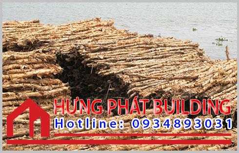 Giá cừ tràm một cây tại Tiền Giang.